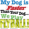 My Dog is Faster Than Your Dog... We Play Flyball!